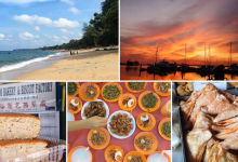 things to do in johor