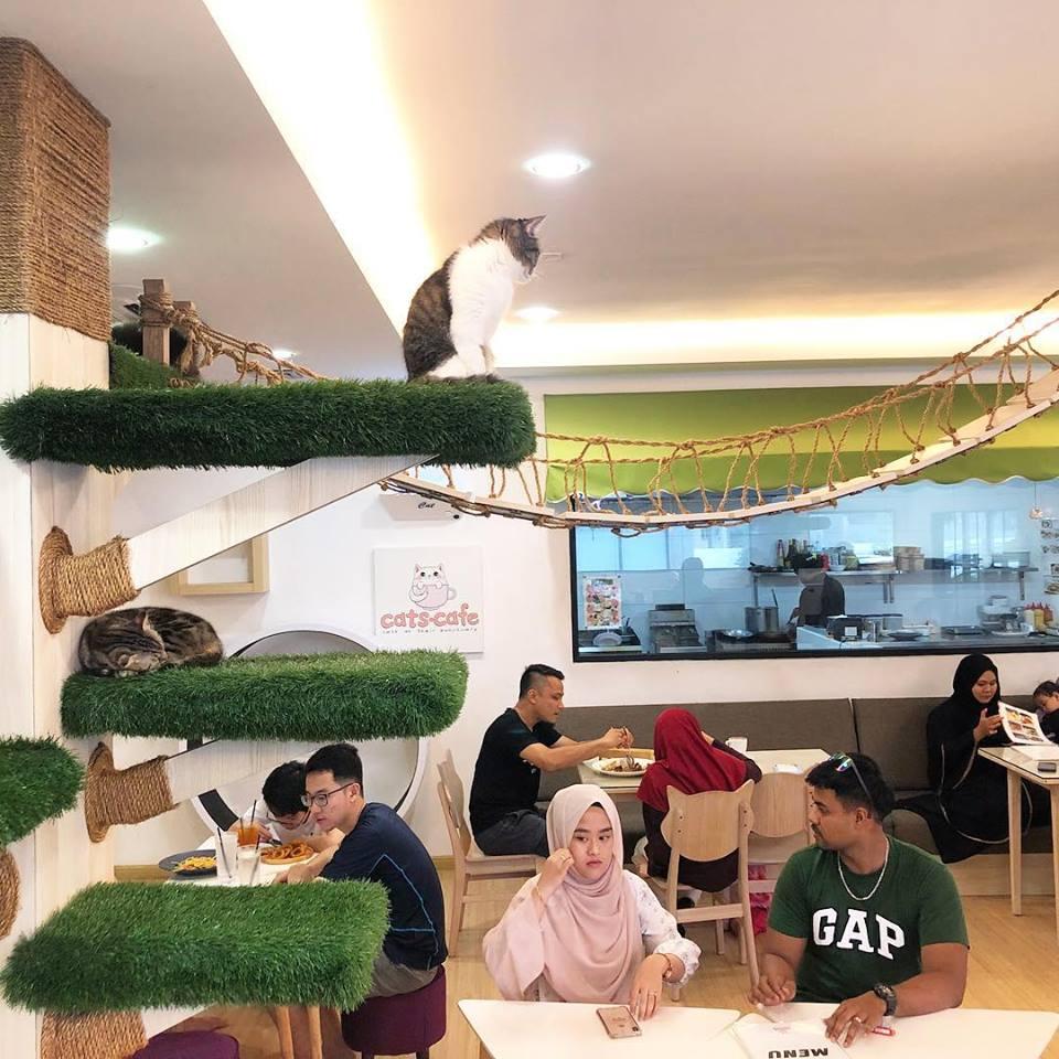best halal food in Johor